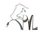 Dinsdag 20 juli 2021 - 13:30 - Veldtocht langs de gewassen - Teelt - Bree